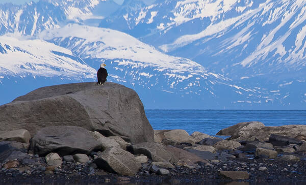 Captain Cook Recreation Area in Alaska