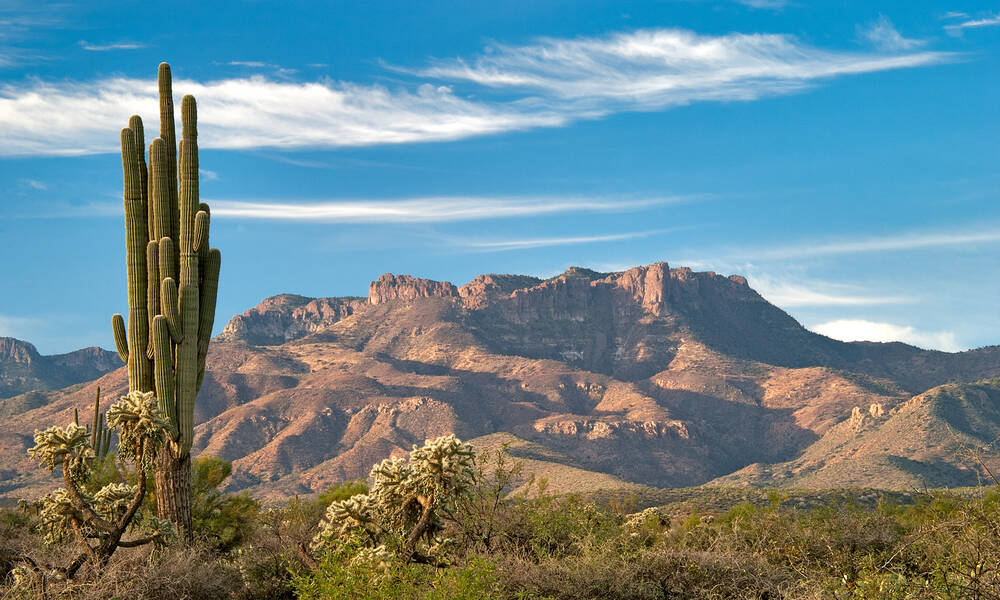 Saguara National Park, Arizona