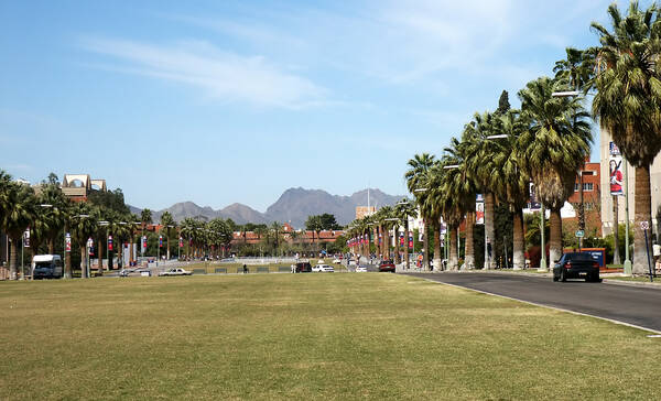 Arizona University Tucson