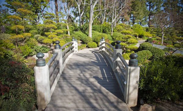 Earl Burns Miller Japanese Garden, Long Beach Californie