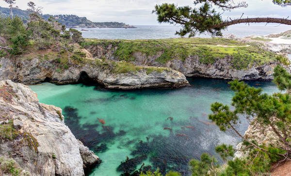 Point Lobos Reserve aan Highway 1 Californië