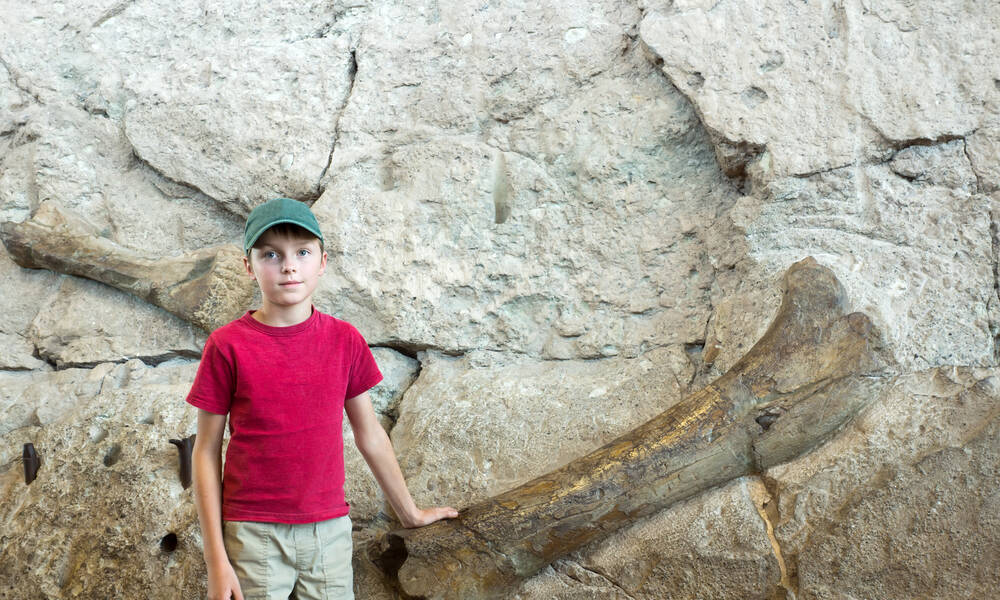 Dinosaur Quarry, Vernal