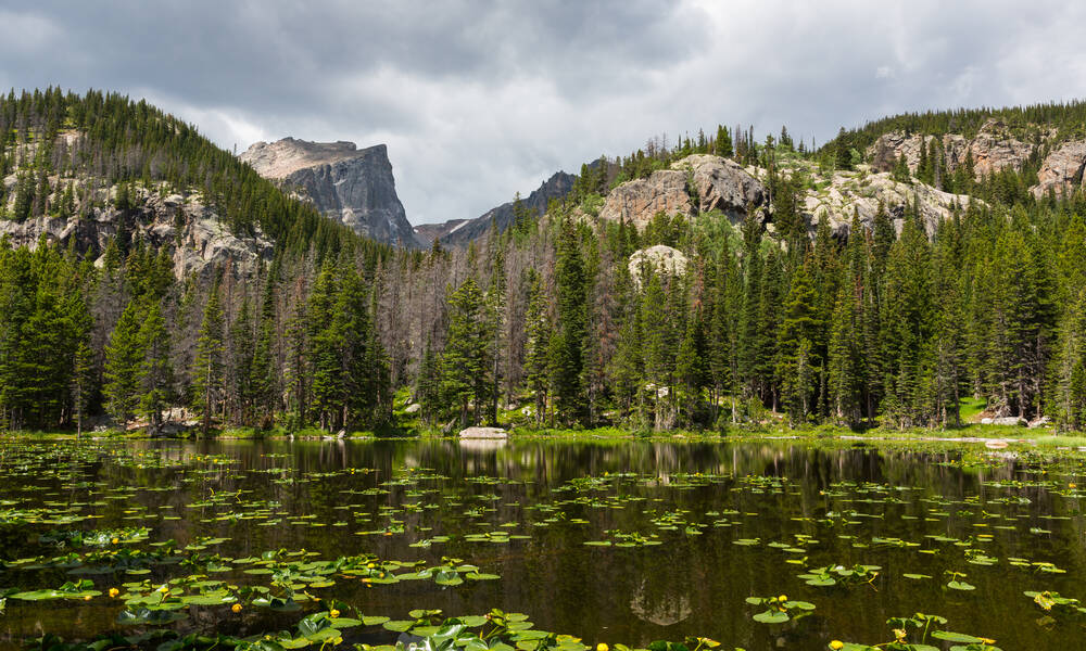 Nymph Lake in Rocky Mountain National Park, Colorado