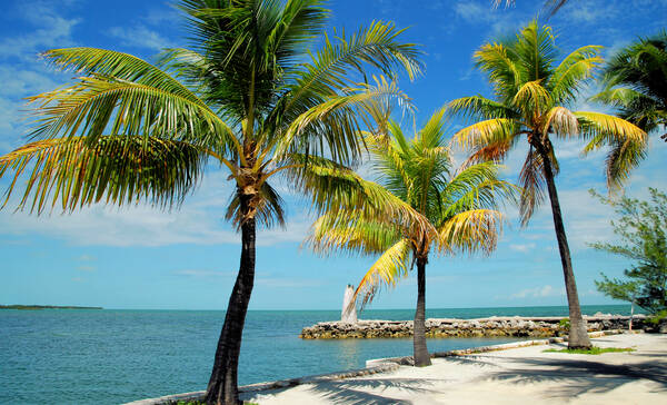 Marathon, Florida Keys