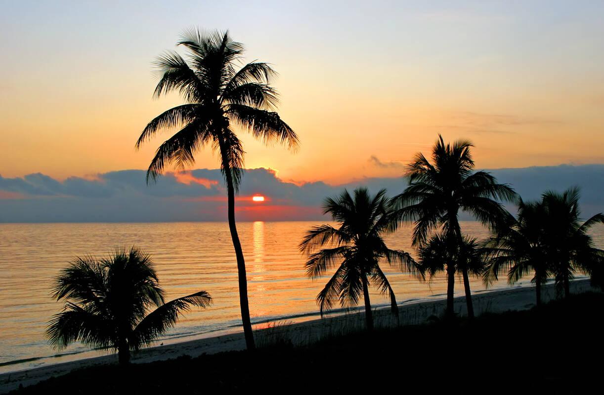 Bezienswaardigheden Sanibel Island Tioga Tours