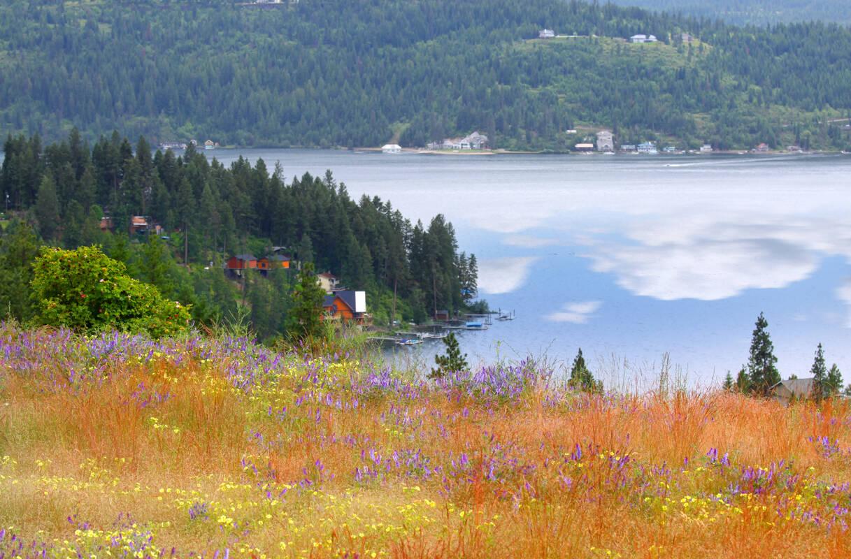 Deze afbeelding heeft een leeg alt-attribuut; de bestandsnaam is coeur-d-alene-lake.6.b958.jpg