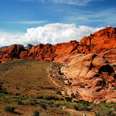 Het landschap van de Red Rock Canyon