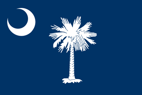 Vlag South Carolina