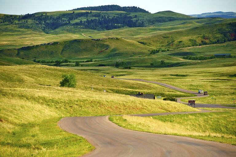 Custer State Park Road, South Dakota