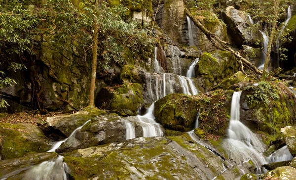 Roaring Fork Motor Trail, Great Smoky Mountains National Park