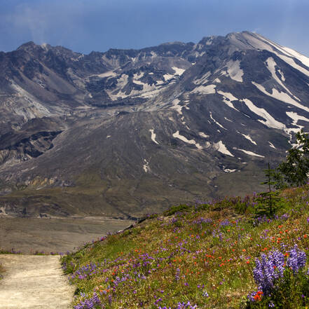 Mount Saint Helens in Washington State