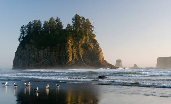 Olympic National Park, Second Beach