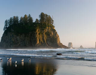 Olympic National Park Washington