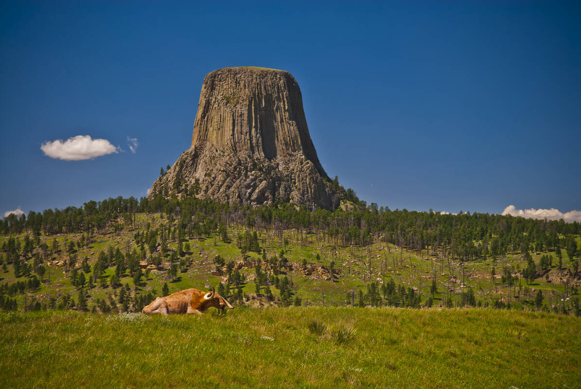 devils tower men Devils tower national monument-official nps site, devils tower, wyoming 37k likes devils tower, an evocative setting for many types of experiences and.