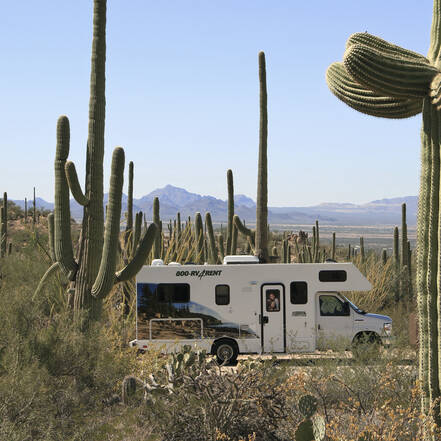 Camper in Saguaro National Park