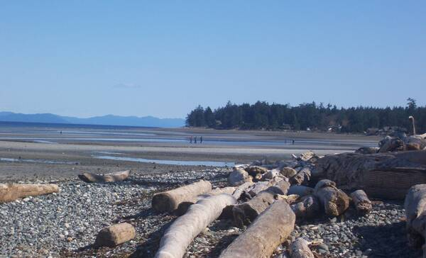 Campbell River Miracle Beach