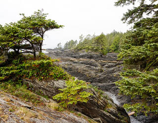 Port Renfrew, British Columbia