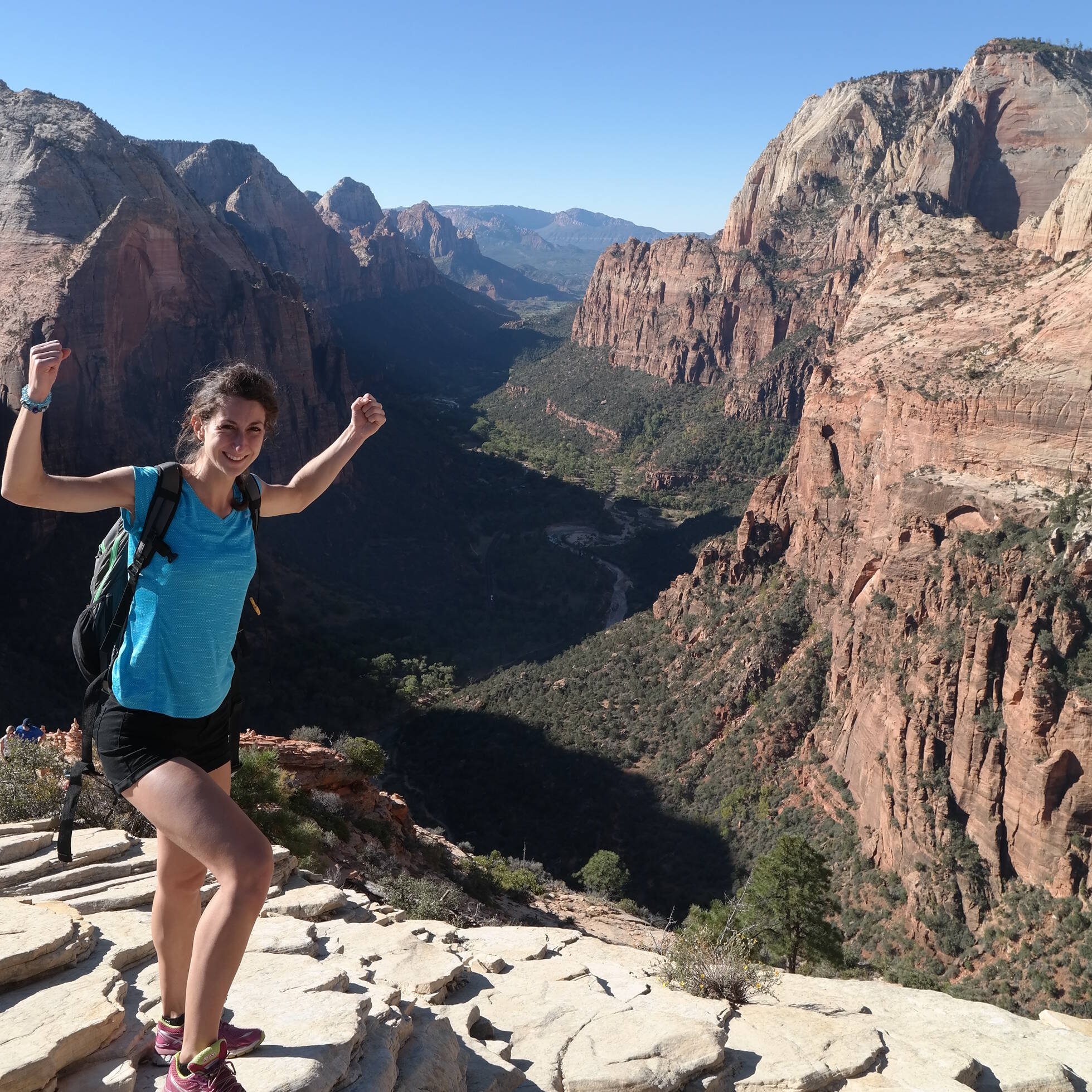 Top uitzicht Angels Landing, Zion National Park
