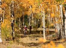 Mountainbiken Aspen