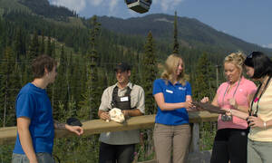 Banff Discover Grizzly Bears Tour