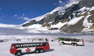 Ice Explorer Excursie Rocky Mountains Canada