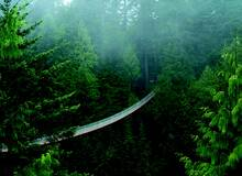 Vancouver Capilano Suspension Bridge