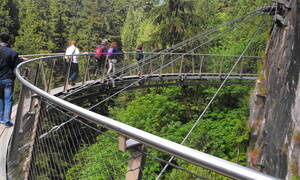 Capilano Suspension Bridge Park boomtoppenpad