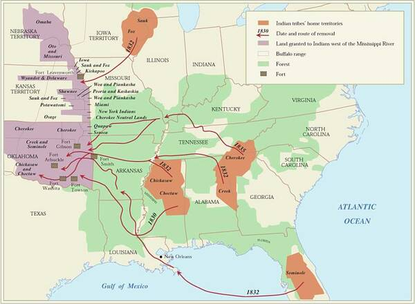 Chickasaw indian removal