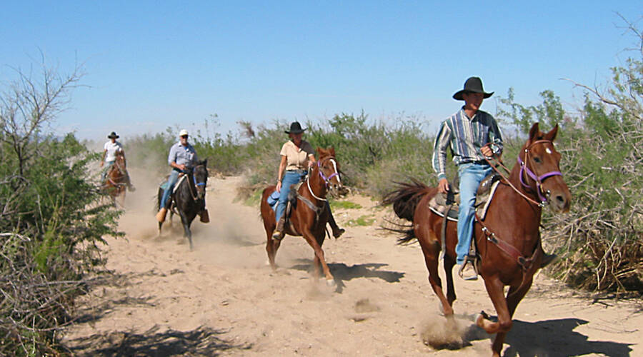 Stage Coach Trails Ranch