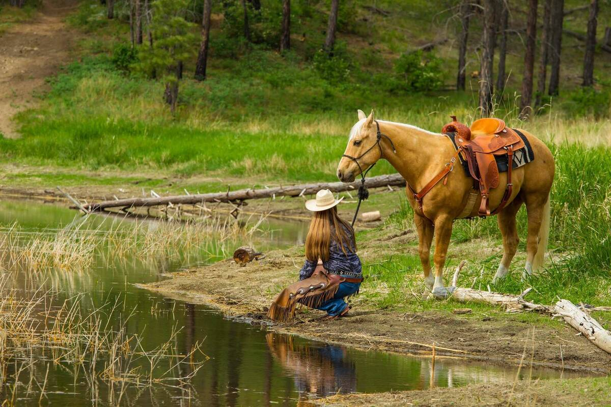 Volledige aansluiting campings in de buurt van Yellowstone